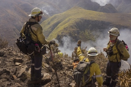 Пожарные оценивают обстановку