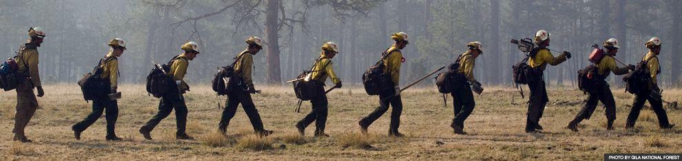 Пожарные при тушении Леса