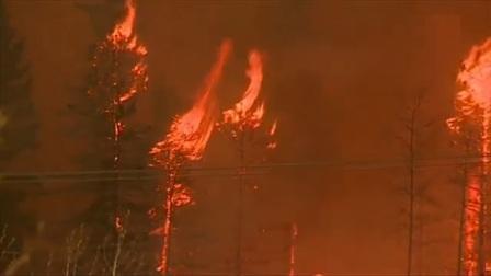 Пример верхового пожара