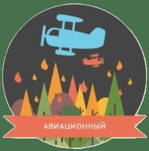 Авиационное обнаружение природного пожара