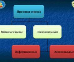 Причины стрессов