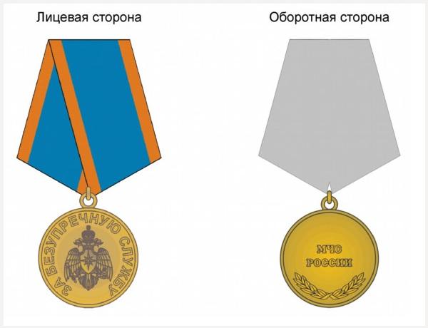 Общий вид медали За безупречную службу
