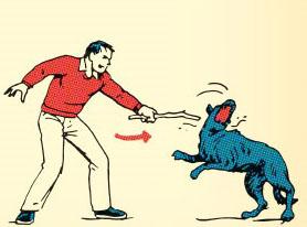 Использование подручных средств для защиты от собаки
