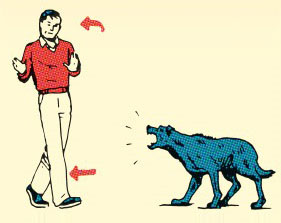 Как вести себя при встрече с собакой