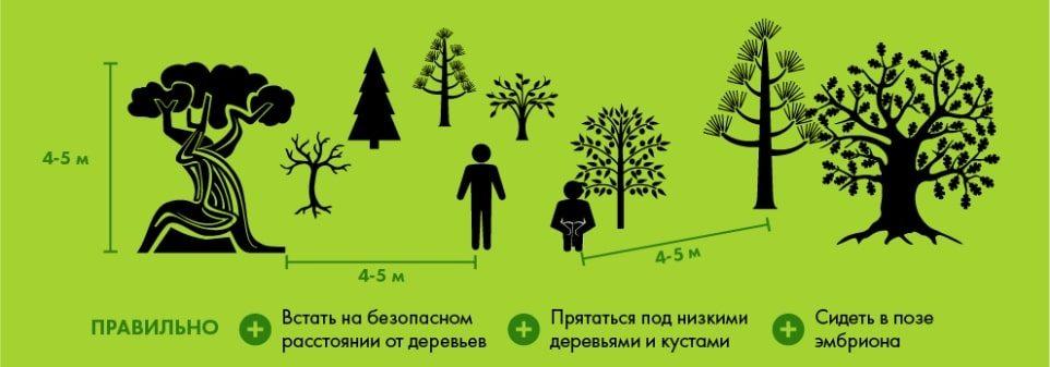 Правила поведение в лесу при грозе