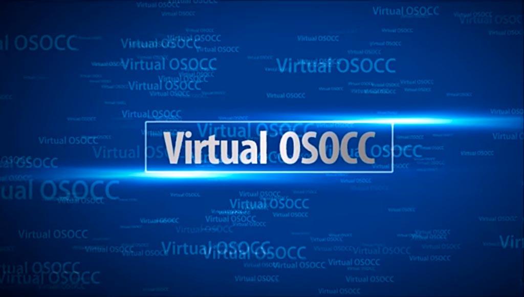 Виртуальный координационный центр (Virtual OSOCC)