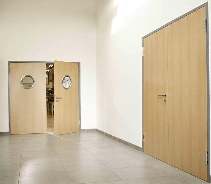 Двери маятникового типа