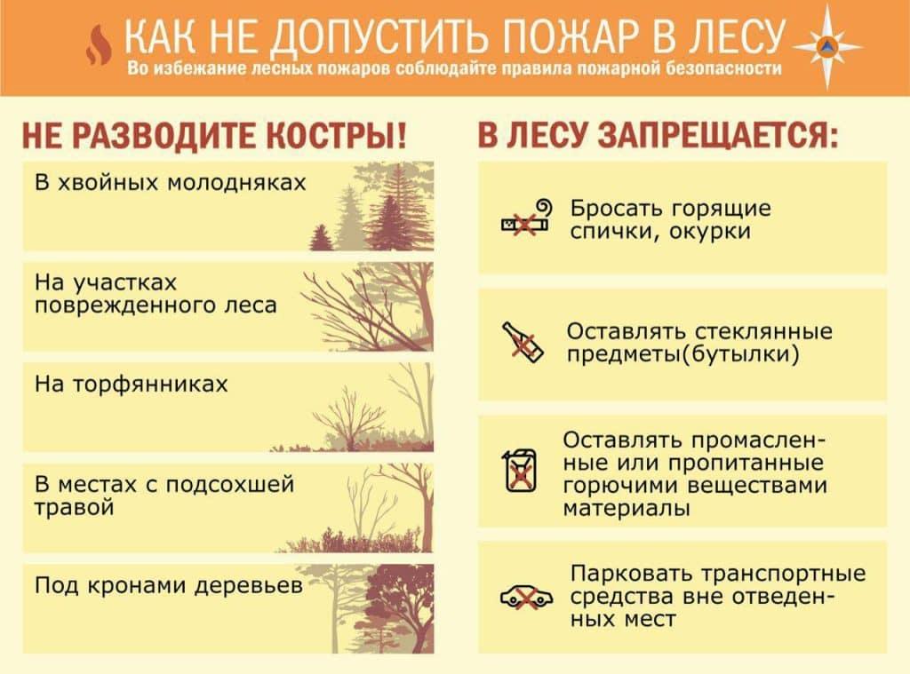 Не допустить пожар в лесу плакат