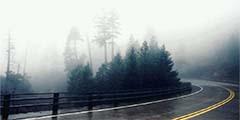 Безопасность при движении в тумане: основные моменты