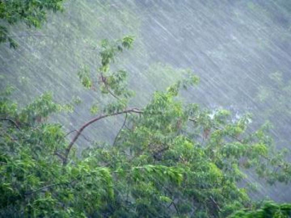 Дожди Урал