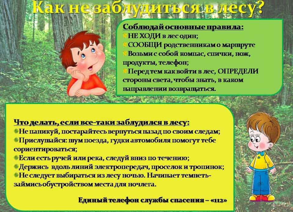 Как детям не заблудиться в лесу