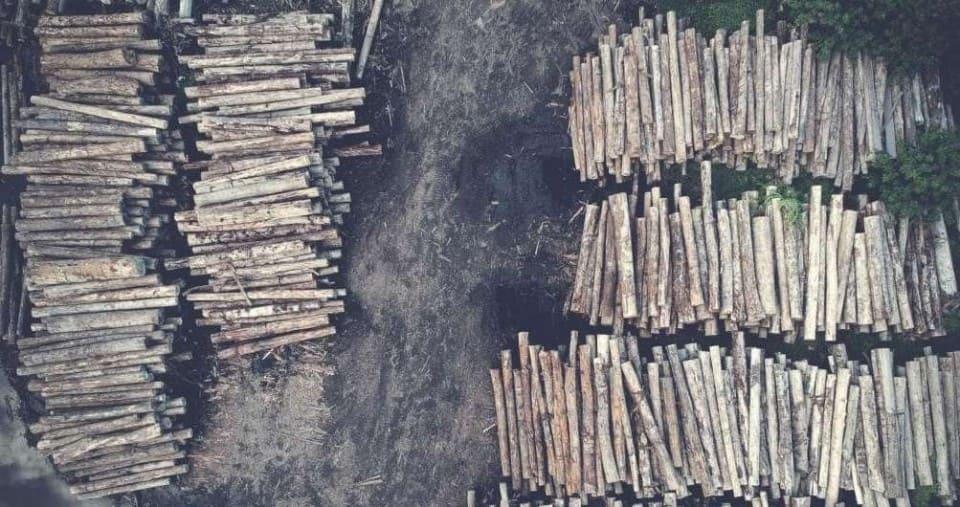 Штабеля леса