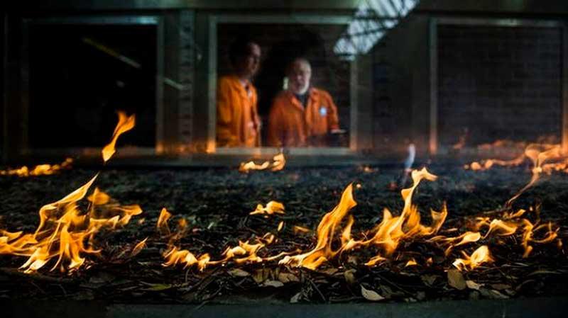 Пиротрон (Pyrotron) установка для исследования лесных пожаров