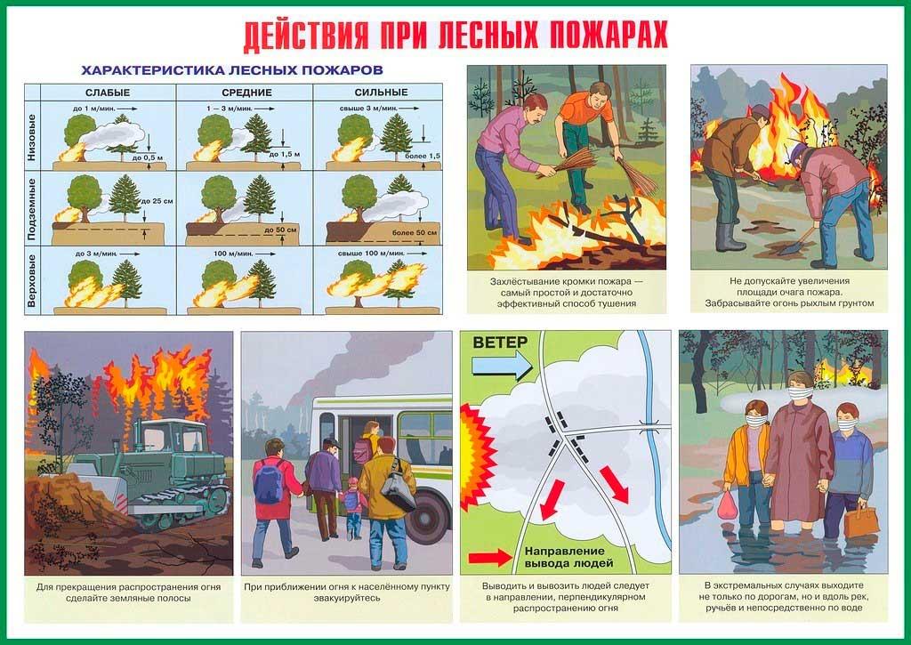 Действия при лесных пожарах