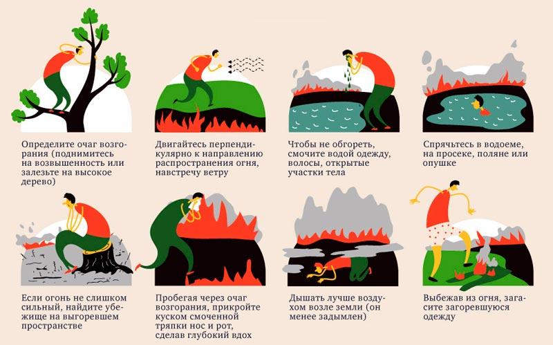 Как спастись от лесного пожара