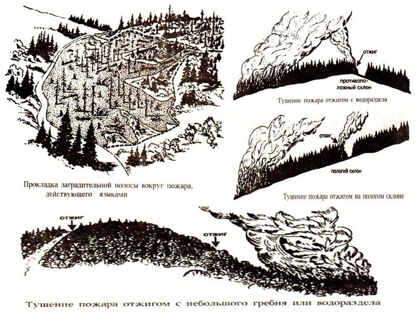 Варианты тушения низовых лесных пожаров