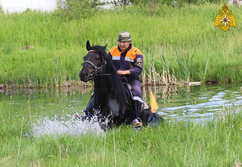 МЧС России поздравляет подразделения конной службы ведомства с профессиональным днем